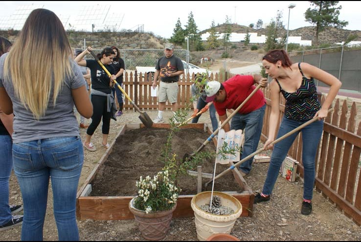 How the Crafton Community Garden Grows