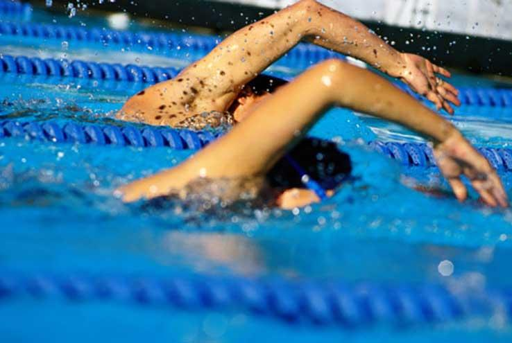 Two swimmers racing