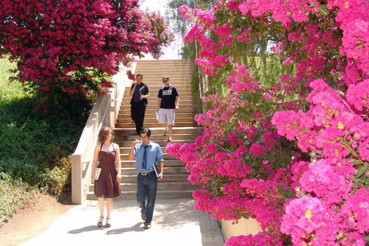 Students walking down a staircase.