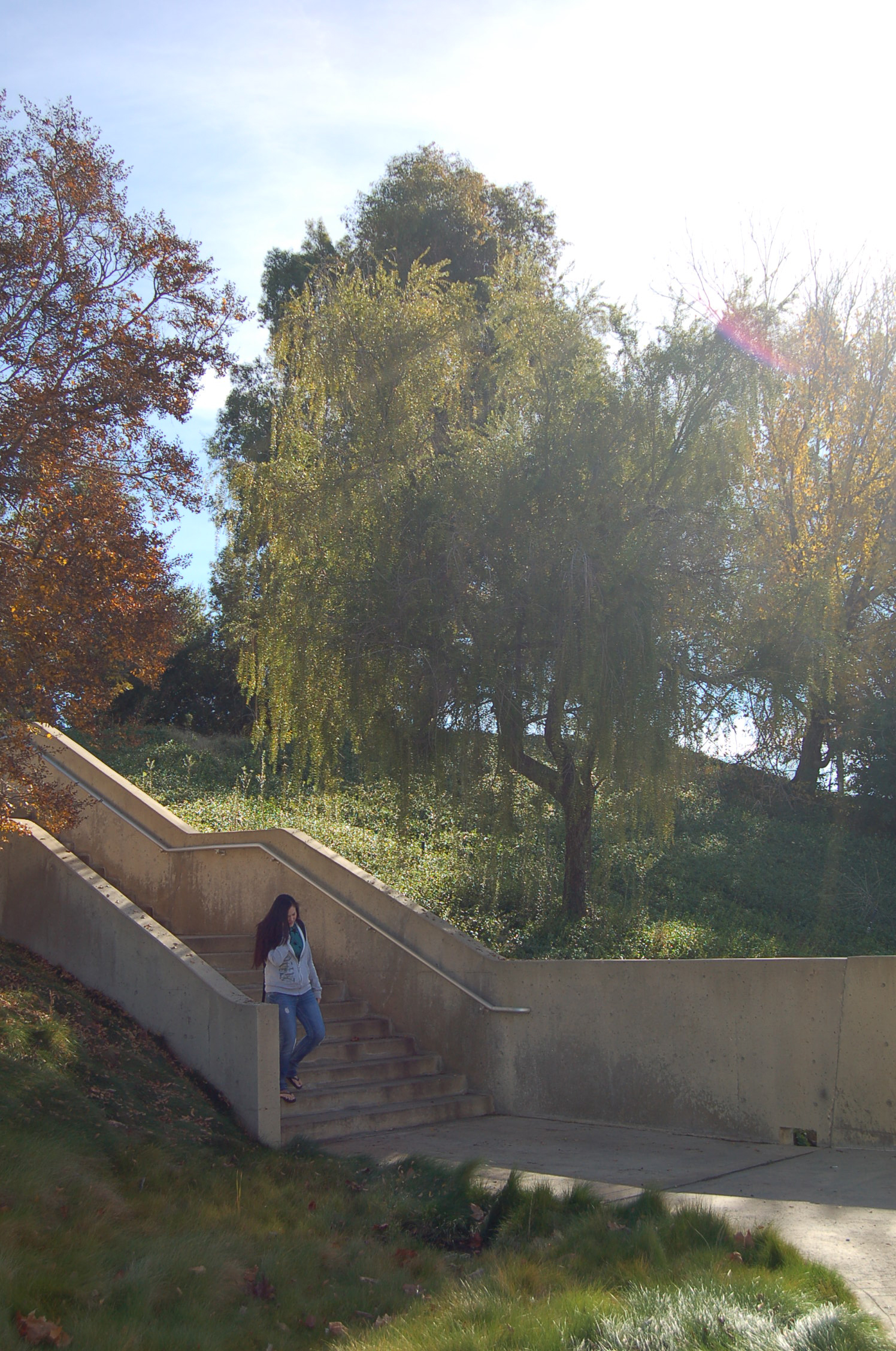 A student on a staircase by some trees.